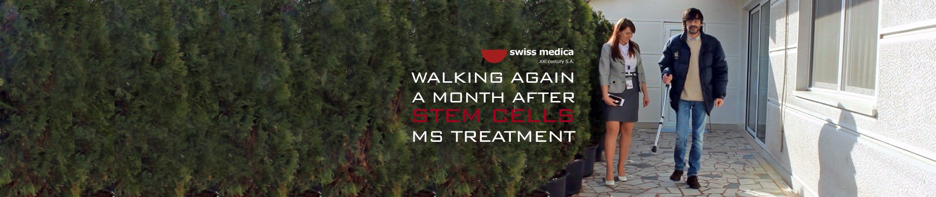 stem cells ms therapy